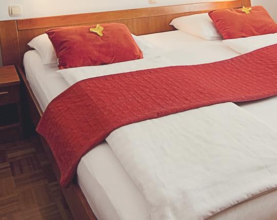 Dvoposteljna soba Hotel v Mariboru
